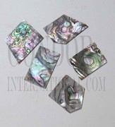 1oz Green abalone blanks mix size select 1.5mm
