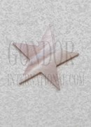 1pc Pink mussel 5p star 8x1.5mm