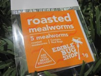 Roasted Mealworms Plain (5 pack)