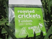 Plain Roasted Crickets (5 Pack)
