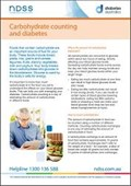 Carbohydrate counting and diabetes (NFS1604)