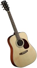 CORT EARTH 70 ACOUSTIC  *Mega Deal*