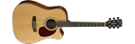 CORT MR710F-BW Blackwood A/E Dreadnought