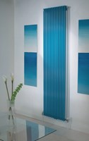 The Radiator Company TRC25 Vertical Double Vertical Tubular Radiator in Colour