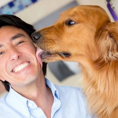 Is it OK to let my dog kiss me?