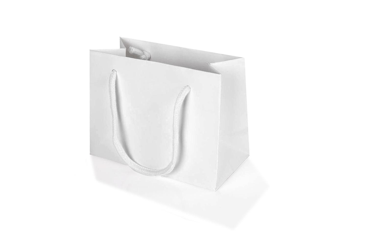 Small White Landscape Paper Gift Bag With Rope Handles 120 x 160 x ...
