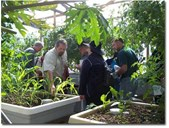 4-Day Aquaponics Master Class BRISBANE - 4-7 September 2017