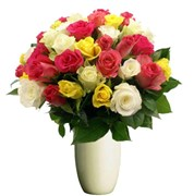Beautiful Mixed Roses, From $70