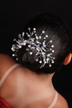 Bun Tiara Winter Minuet