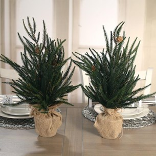 2 x Christmas Trees Angel Pine
