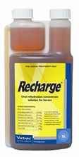 Recharge Horse 1L - (Vetsearch)