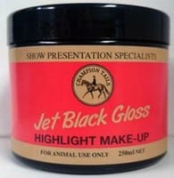 Jet Black Gloss Highlight Makeup