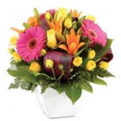 About St John of God Hospital Murdoch - Murdoch Florist