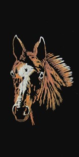 Foal Wall-Hanging