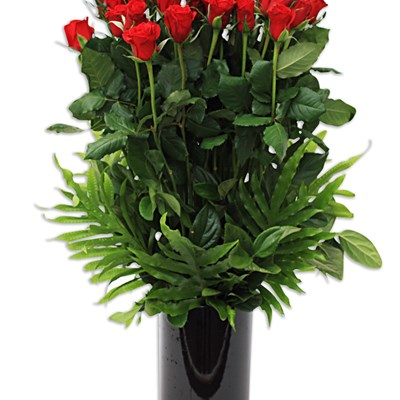 Wembley Day Surgery - Subiaco Florist Delivers Flowers & More to Wembley Day Surgery Daily