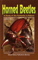 Horned Beetles: A Study of the Fantastic in Nature