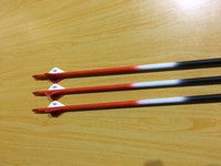 "Carbon Arrows Red cresting 2"" blazer helical vanes dz  50#"