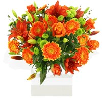 Stunning Orange Flower Arrangement From $65