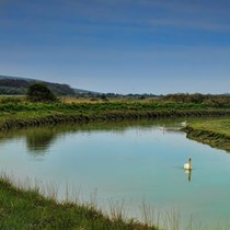 Walk and Wine Tour - Alfriston River and Cuckmere Haven Walk (WEEKDAY)
