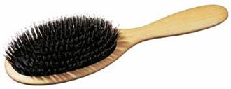 Cushion Brush with Black Bristle and Ppl Pin