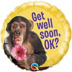 Get Well Soon (Chimp)