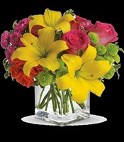 T159-1A Teleflora's Sunsplash