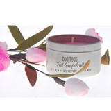 Bodytreats Candles in Tins