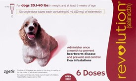 Revolution Red Dogs 22-44lbs (10-20kg) - 6 Pack