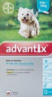 Advantix Dogs 8.8-22lbs (4-10kg) - 12 Pack