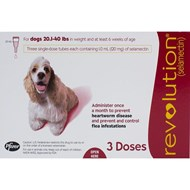 Revolution Red Dogs 22-44lbs (10-20kg) - 1 Pack