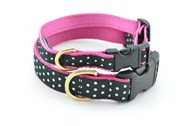 Black & White Dot Teacup Collar