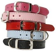 DOGUE Plain Jane Leather Dog Collars  55cm & 65cm